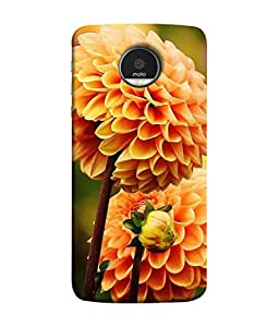 Snapdilla Designer Back Case Cover for Motorola Moto Z Force :: Motorola Moto Z Force Droid for USA (Bloom Petal Garden Background Plant )