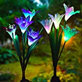 Outdoor Solar Garden Stake Lights - Lvyleaf 2 Pack Solar Powered Lights with 8 Lily Flower, Multi-Color Changing LED Solar Stake Lights for Garden, Patio, Backyard (Purple and White)