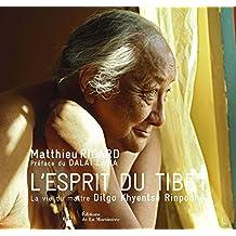 L'Esprit du Tibet : La vie du maître Dilgo Khyentsé Rinpoché
