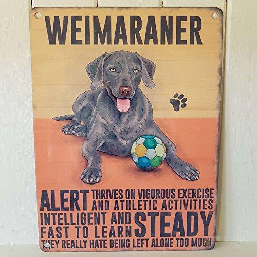 Weimaraner Gun Hund Metall Schild Alert Intelligente Schnell zu erlernen, Hund