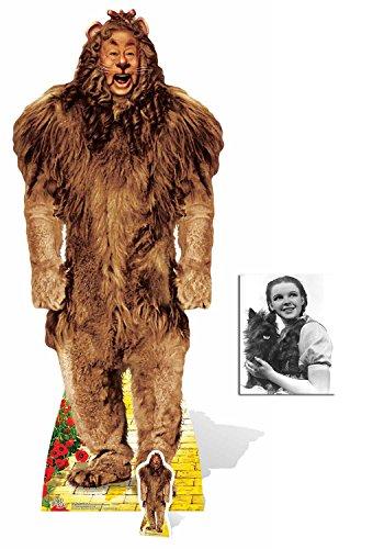 Fan Pack - der feige Löwe (Bert Lahr) von Der Zauberer von Oz (Wizard of Oz) Lebensgrosse und klein Pappaufsteller - mit 25cm x 20cm foto (Oz Toto Zauberer Von Der Aus)