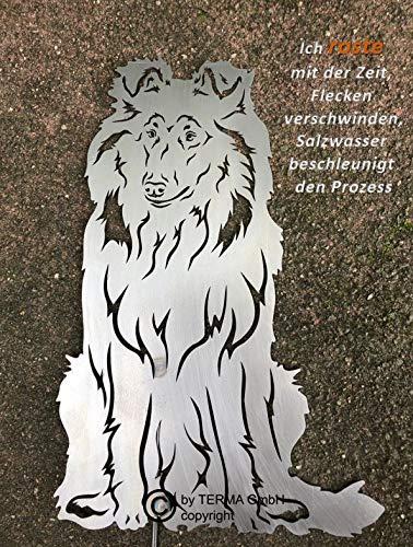 Terma Stahldesign Langhaarcollie höhe 30 cm, Edelrost Hund, Rostfigur, Gartenfigur, Rost Figur -