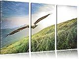 Majestic Bald Eagle Bunstift effetto immagine Canvas 3 PC 120x80 immagine sulla tela, XXL enormi immagini completamente Pagina con la barella, stampe d'arte sul murale cornice gänstiger come la pittura o un dipinto ad olio, non un manifesto o un banner,