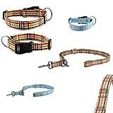 CarlCurt - Design Line: Hundehalsband & Hundeleine Im Set, Aus Strapazierfähigem Polyester, M 35-53cm & M 1,90m, Beige