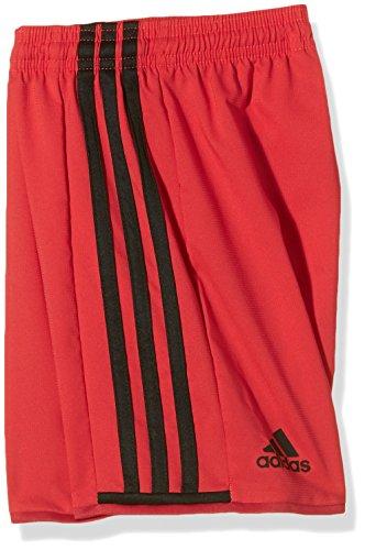adidas Herren Torwartshorts Condivo 16 Shorts Vivid Red S13/Power Red/Black