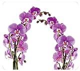 WENKO 2712917500 Multi-Platte Orchideenblüte - für Glaskeramik Kochfelder, Schneidbrett, Gehärtetes Glas, 56 x 0.5 x 50 cm, Mehrfarbig