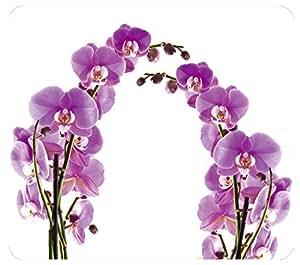 WENKO 2712917500 Plaque multi Fleurs d'orchidées - pour plaques de cuisson vitrocéramiques, planche à découper, Verre trempé, 50 x 0.5 x 56 cm, Multicolore
