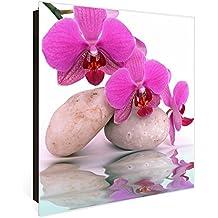 Suchergebnis Auf Amazonde Für Orchideen Glas Bürobedarf