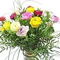 Strauß bunte Ranunkeln von Blumenversand Rosenbote bei Du und dein Garten