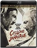 Cyclone à la Jamaïque - BRD [Blu-ray]