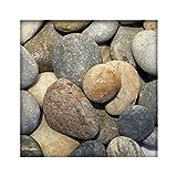Flusskiesel Zierkies River Pebbles Gartenkies Ziersteine Gartenteich bunt 5 kg Sack