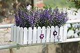 EMSA 956501200 Blumenkasten LANDHAUS, UV-beständig, frostfest, Made in Germany, Weiß, 47 x 20 x 16 cm - 6