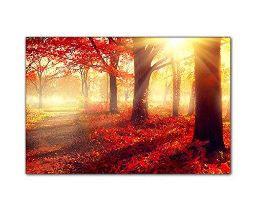 Pb art–autunno paesaggio 80x 120cm come stampa artistica su tela e telaio in legno–migliore qualità, fatto a mano in germania.