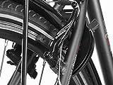 Fischer Proline ETH 1606 Herren E-Bike Trekking 24-Gang, 28 Zoll, 19173 - 11