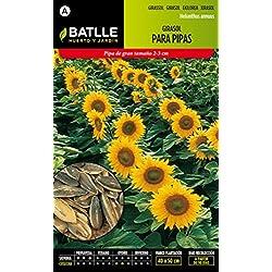 Semillas Batlle 097337BOLS - Girasol para pipas