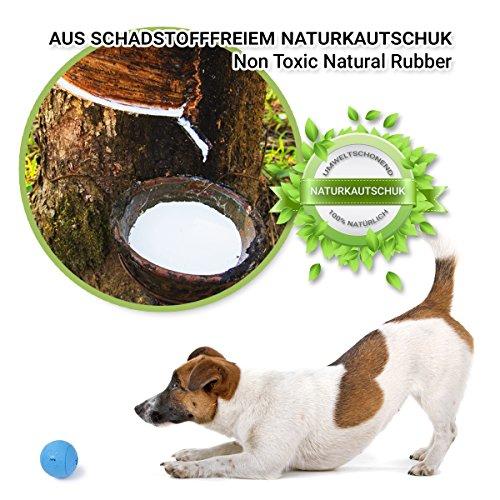 Robuster Hundeball aus Naturkautschuk von PetPäl - 4