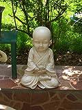 Garden Statue Review and Comparison