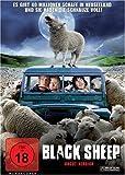 DVD Cover 'Black Sheep - uncut