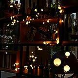 Luces de cadena, LED Rattan Ball Fairy lights 2.5M / 8FT 72 bombillas 8 modos Luces decorativas para dormitorio, boda, Navidad (blanco cálido)