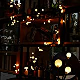 LED luci della stringa, luci da fata della sfera del rattan del LED 2.5 m 72 Bulbi 8 modalità luci decorative impermeabili per il dormitorio, giardino del patio, Wedding, la Natale (Bianco Caldo)
