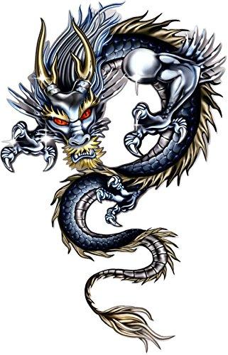 tatou-vitre-et-voiture-dragon