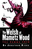The Welsh at Mametz Wood, The Somme 1916