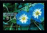 Goethes Blau. Gedanken zur Farbe (Wandkalender 2019 DIN A2 quer): Die schönsten Blautöne aus der Natur, charakterisiert von Goethe. (Monatskalender, 14 Seiten ) (CALVENDO Natur)