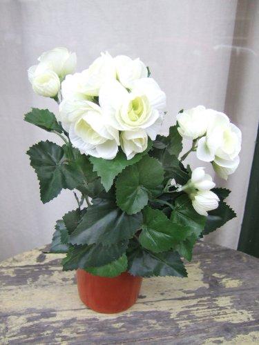 Künstliche Begonien im Topf, 2 Stück mit cremefarbenen Blüten