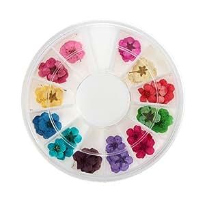 60 pcs 3D Tips Fleur Séchée CARROUSEL Acrylique Gel Dessin Déco Ongle Manucure Nail Art roue