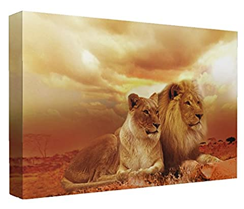 Lion and Lioness in the Sunset Wildlife Canvas Art Print