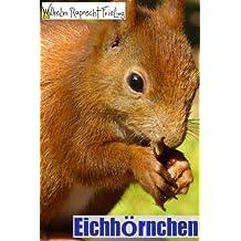 EICHHÖRNCHEN • Ein Fotobuch