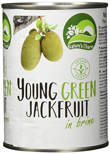 Nature's Charm Jackfruit in Lake, 6er Pack (6 x 565 g)