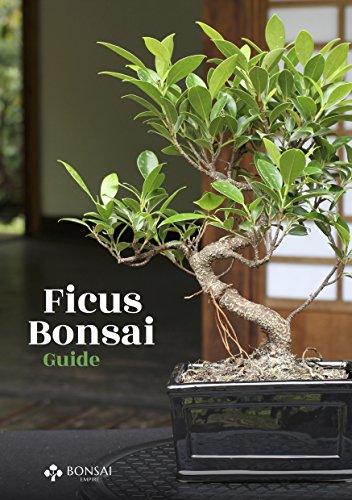 Ficus Bonsai Guide por Bonsai Empire