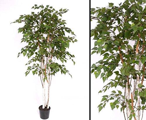 Birke, Weißbierke, Kunstbaum, 1484 Blätter, Höhe 210cm – künstliche Bäume