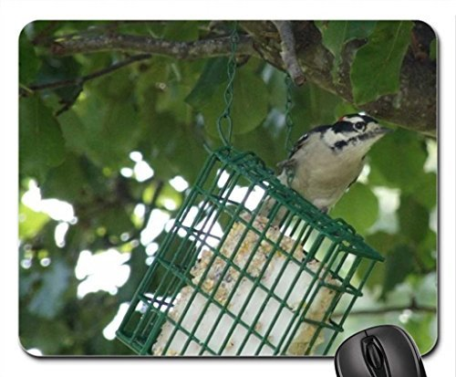 downy-woodpecker-mouse-pad-mousepad-birds-mouse-pad