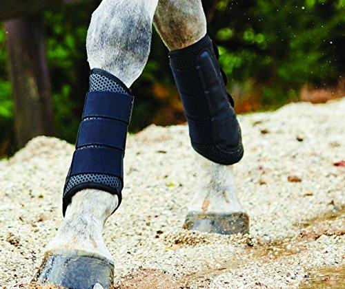 Weatherbeeta pony/cavallo esercizio stivali, White, Full