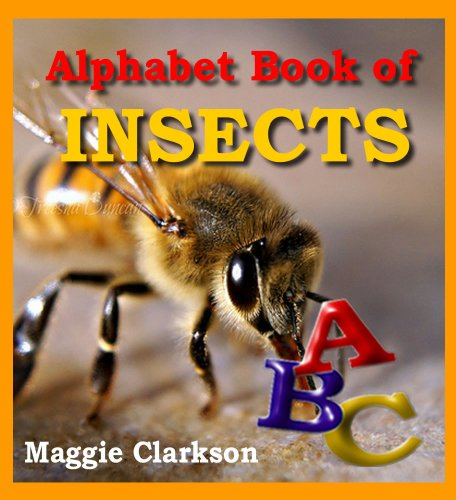 Alphabet Book Of Insects: Kids Books About Bugs – Insect Pictures & Photo Books For Kids (Animal Alphabet Books 3) Descargar PDF Gratis