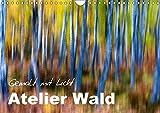 Atelier Wald - gemalt mit Licht (Wandkalender 2017 DIN A4 quer): Naturfotografie der Spitzenklasse - ohne Computereffekte! (Monatskalender, 14 Seiten ) (CALVENDO Natur)