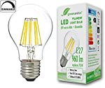 Chollos Amazon para Bombilla de filamento LED gree...
