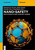 Nano-Safety: What We Need to Know to Protect Workers (De Gruyter Textbook)
