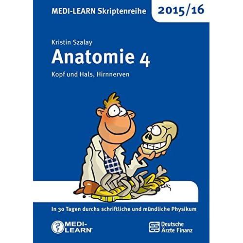 PDF] MEDI-LEARN Skriptenreihe 2015/16: Anatomie 4 - Kopf und Hals ...