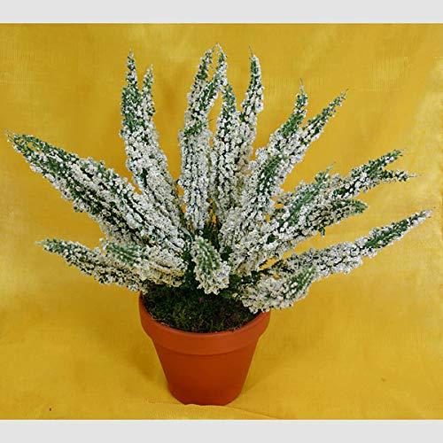 Erika 28cm weiß -ohne Topf- DP Kunstpflanzen Kunstblumen Erikabusch künstliches Heidekraut künstliche Blumen Pflanzen Blühpflanze