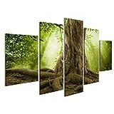 Bild Bilder auf Leinwand Große baumwurzeln und Sonnenschein in Einem grünen Wald Wandbild Leinwandbild Poster