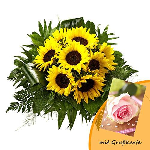 Dominik Blumen und Pflanzen 755838