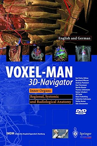 VOXEL-MAN 3D-Navigator