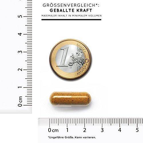 Bio Curcuma (Kurkuma) Kapseln mit 3000 mg pro Tagesdosis – 180 Stück im Monatsvorrat. Zertifiziert Bio. Mit Piperin aus Bio schwarzem Pfeffer. Frei von Zusatzstoffen wie Gelatine oder Magnesiumstearat. Laborgeprüft, mit von Natur aus hohem Curcumin Gehalt. Hochdosiert, vegan und hergestellt in Deutschland - 8