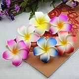 Calcifer Lot de 30pinces à cheveux de 5cm Style fleurs hawaïennes