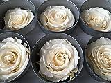 Echte, auf Glycerinbasis konservierte Rosenköpfe; Farbe champagner; 6 Stück