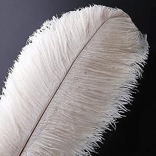 VoilaLove 10 pcs Plume d'Autruche Naturel Artisanat 16-18 Pouce (40-45 cm) Plume pour Centres de Mariage Décoration de La Maison (40-45cm,Blanc)