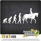 Evolution Pferdesport 20 x 8,5 cm IN 15 FARBEN - Neon + Chrom! Sticker Aufkleber